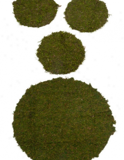 "10"" Supermoss, Set Of 3"