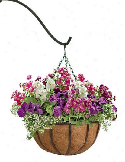 """18"""" Hayrack Hanging Basket"""