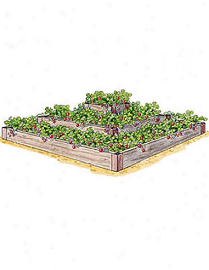 3-tier Strawberry Bed