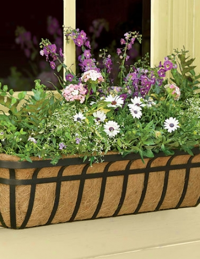 "30"" Aquaav™ Hayrack Windowbox"