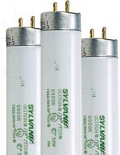 4-ft Sunlite® Bulbs, Set Of 3