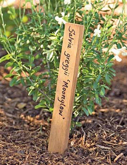 "6"" Teak Plant Markers, Set Of 5"