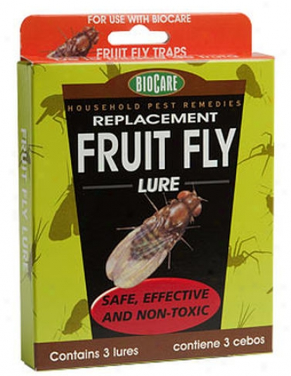 Additional Fruit Fly Lures, Set Of 3