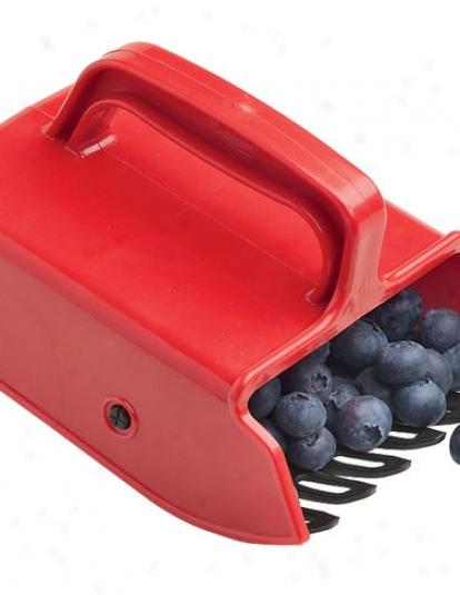 Berry Comb