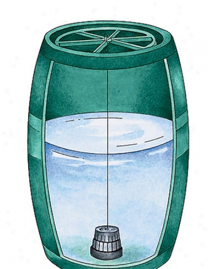 Clear Water Dispenser System