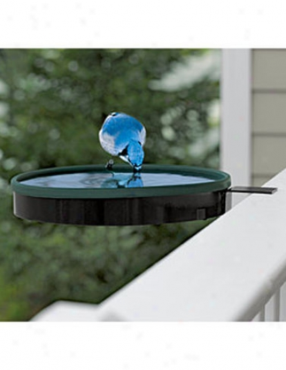 Deck Heted Birdbath