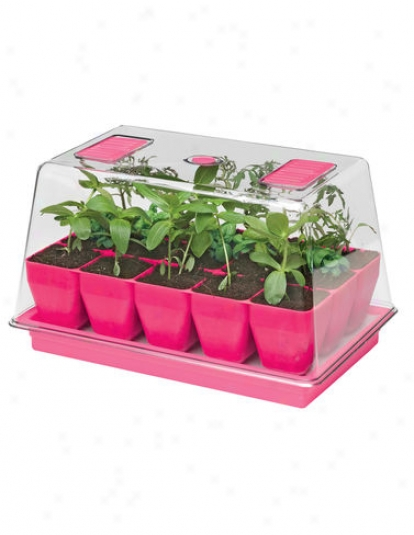 Deep Root Seedstarting System, Wicked