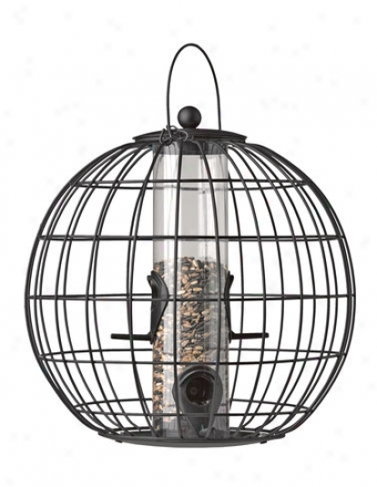 Deluxe Globe Cage Freder