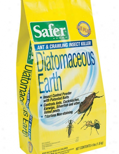 Datomaceous Earth, 4 Lbs.