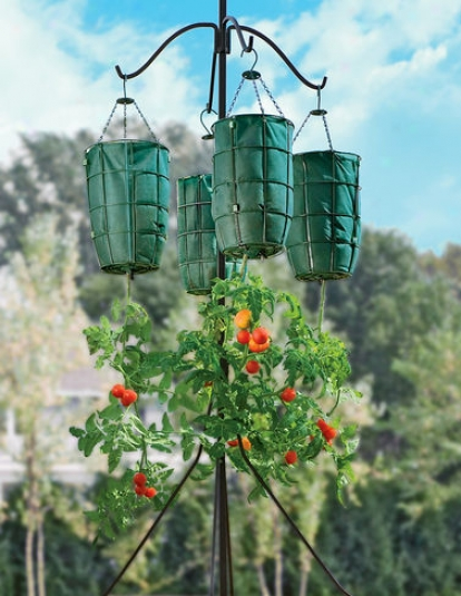 Four-arm Plant Hanger