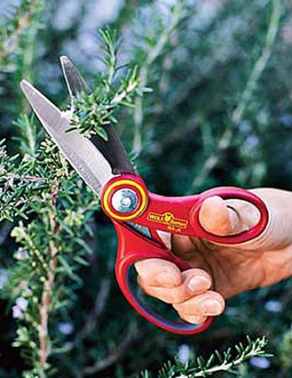 Garden Scissors