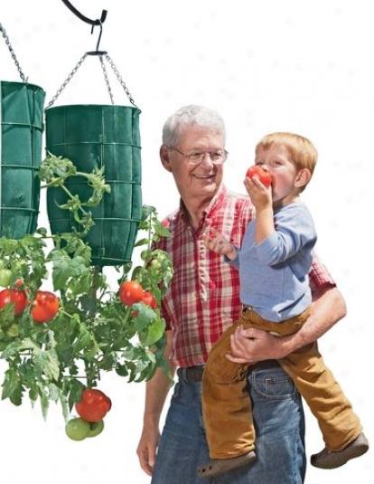 Gardener's Revilution® Planter