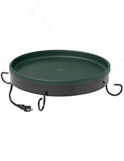 Ground Heated Birdbath