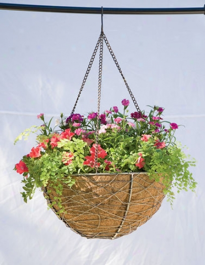 Hanging Nest Basket, 14""