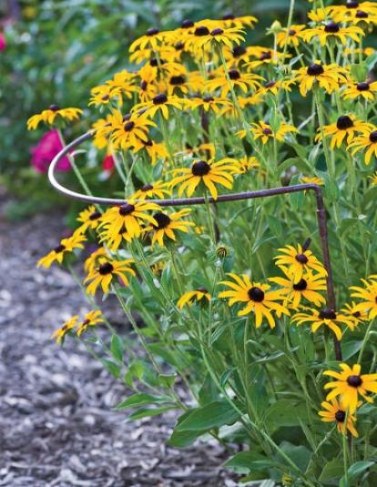 Jardin Half-round Plant Supports, Set Of 2