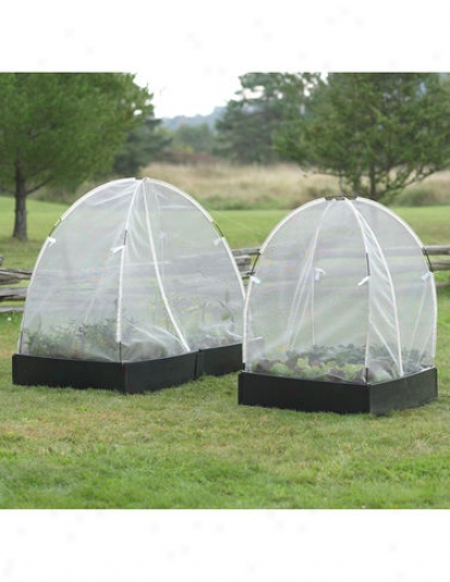 Engender Protection Tent, 3' X 6'