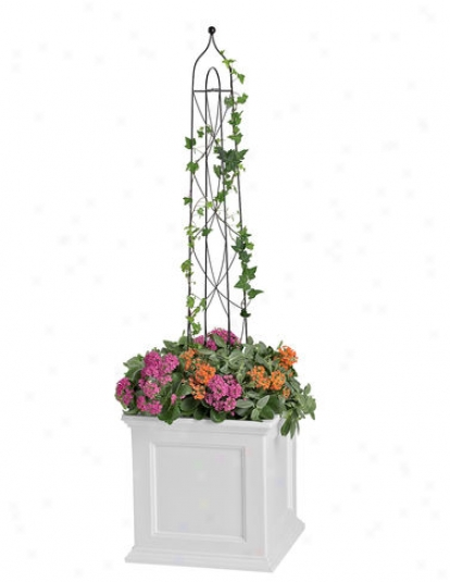 Pot Trellis, Large