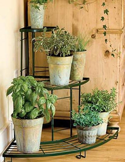 Quarter-rouhd Plant Terrace