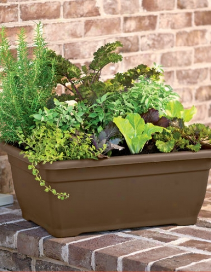 Self-watering Patio Planter