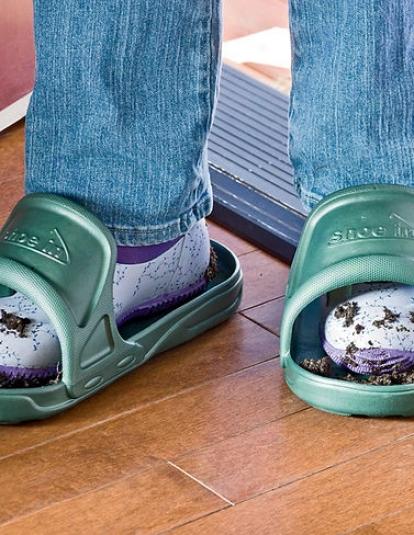 Shoe-ins
