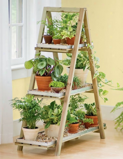 Wood3n A-rame Plant Stand