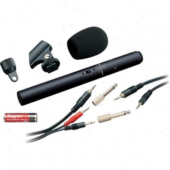 Audio Technic aAt6250 Stereo Condenser Video/recording Microphone
