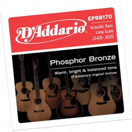D'addario Epbb170 Phosphor Bronze 45-100 Long Lamina Acoustic Bass Strings