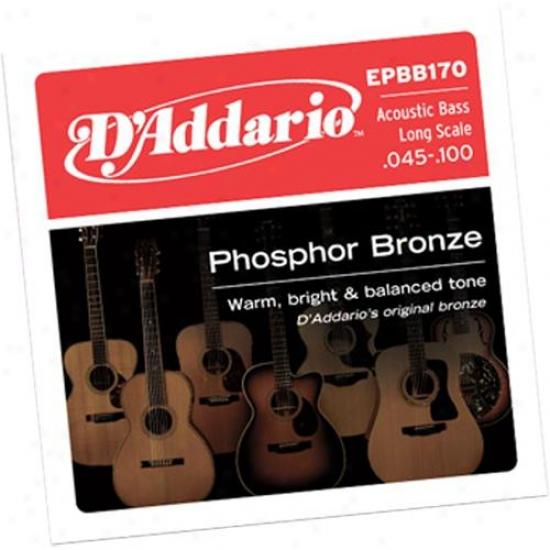 D'addario Epbb170 Phosphor Bronze 45-100 Long Lamina Acoustic Bass Strings
