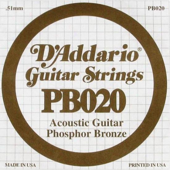 D'addario Pb020 020 Phosphor Bronze Wound