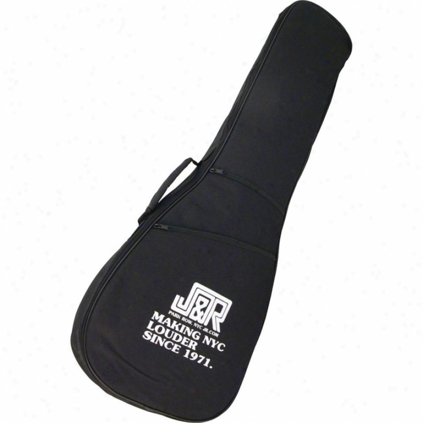D'andrea Dg10e Electric Guitar Gig Bag With J&r Logo