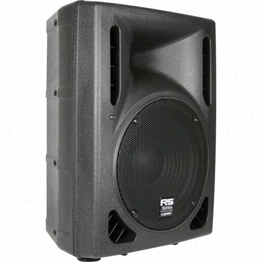 """Excalibur Electronic Gemini Rs-310 Passive 10"""" Loudspeaker"""