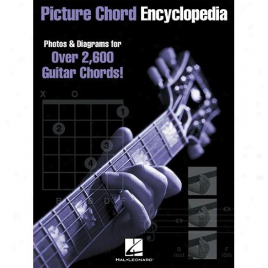 Hal Leonard Hl 00695224 Picture Chord Encyclopedia
