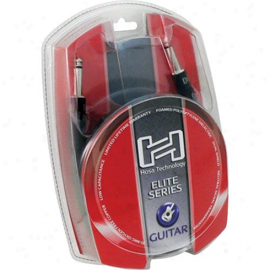 Hosa Gtr-010 10 Foot Professional Guitar Cable - Straight To Straight