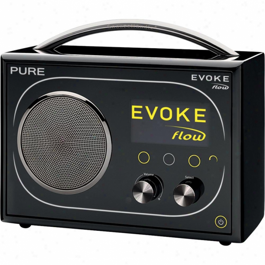 Pure Evoke Flow Fm & Internet Alarm Radio