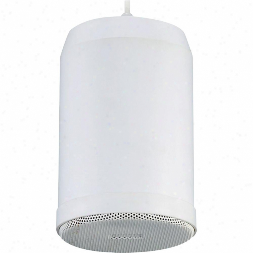 Pyle 5'' 70v 20 Watts Ceiling Death by the halter Pendent Speaker With 70v, Transformer (whi