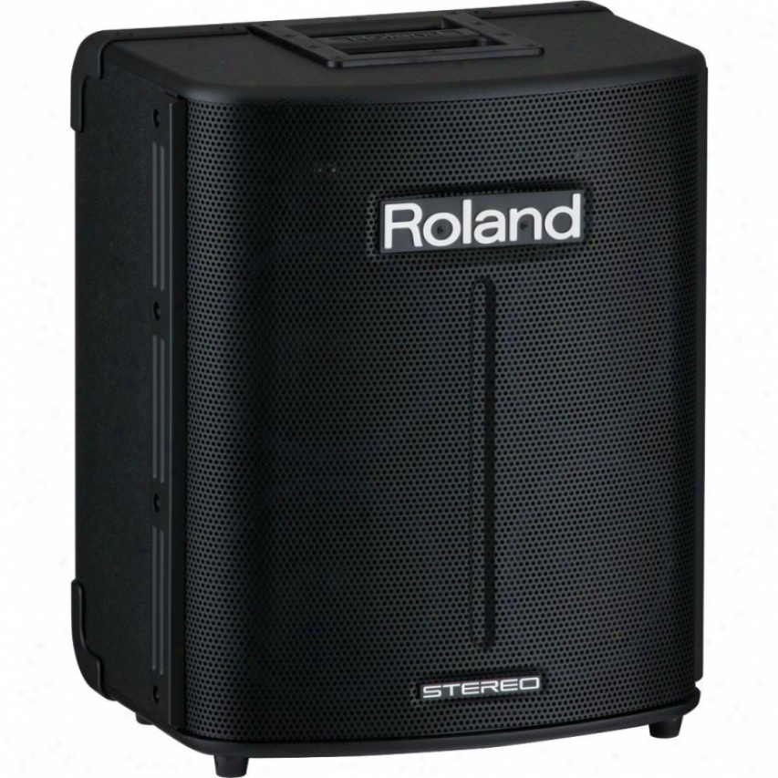 Roland All In One Portable Digiyal Pa Ba-330