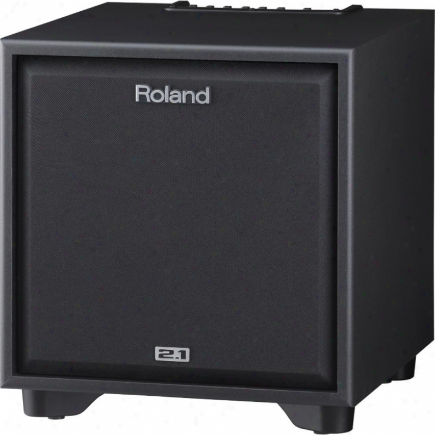 Roland Cm-220 Cube Monitor 2.1 Monitor System For Electronic Instruments