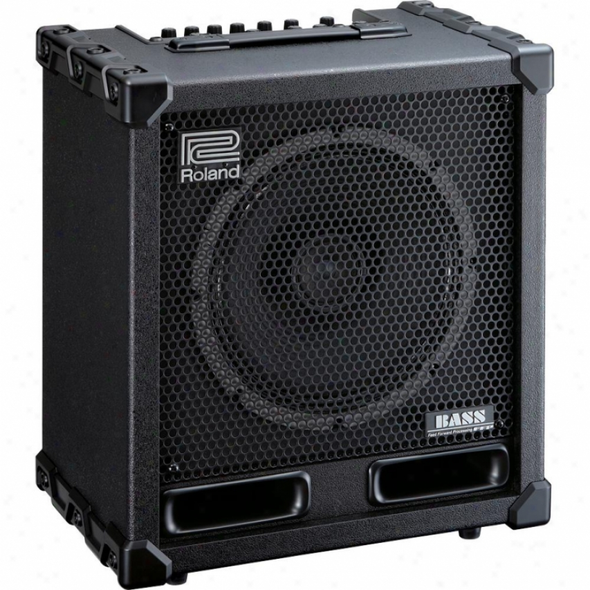 Roland Cube-120xl 120-watt Bass Amplifier