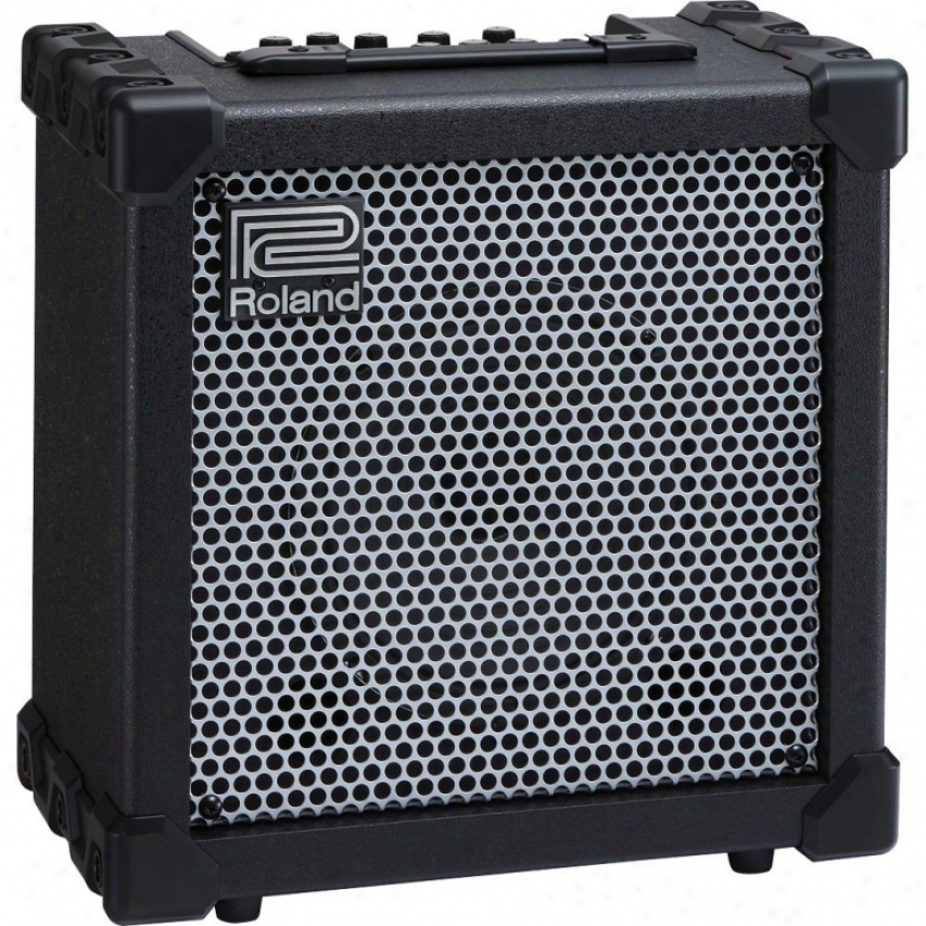 Roland Cube-20xl 20-watt Bass Amplifier