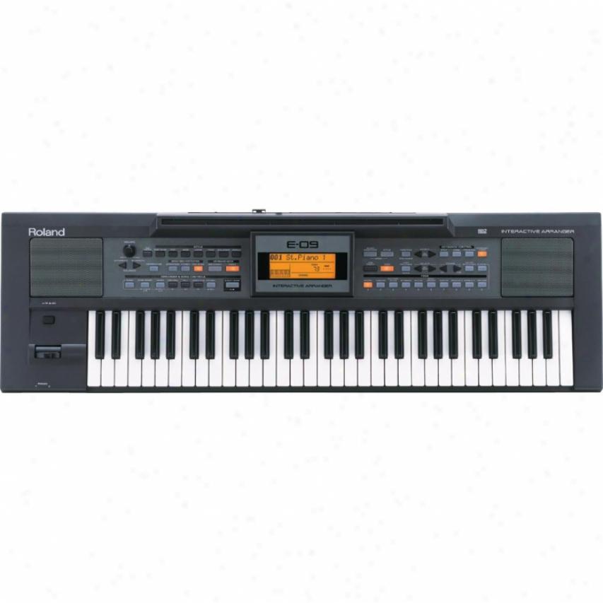 Roland E-09w Imteractive Keyboard Arranger