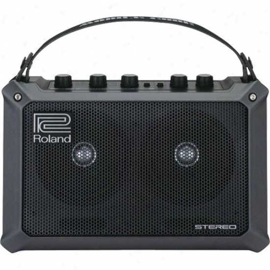 Roland Mobilecube Battery Powered Stereo Musical Instrument Amp