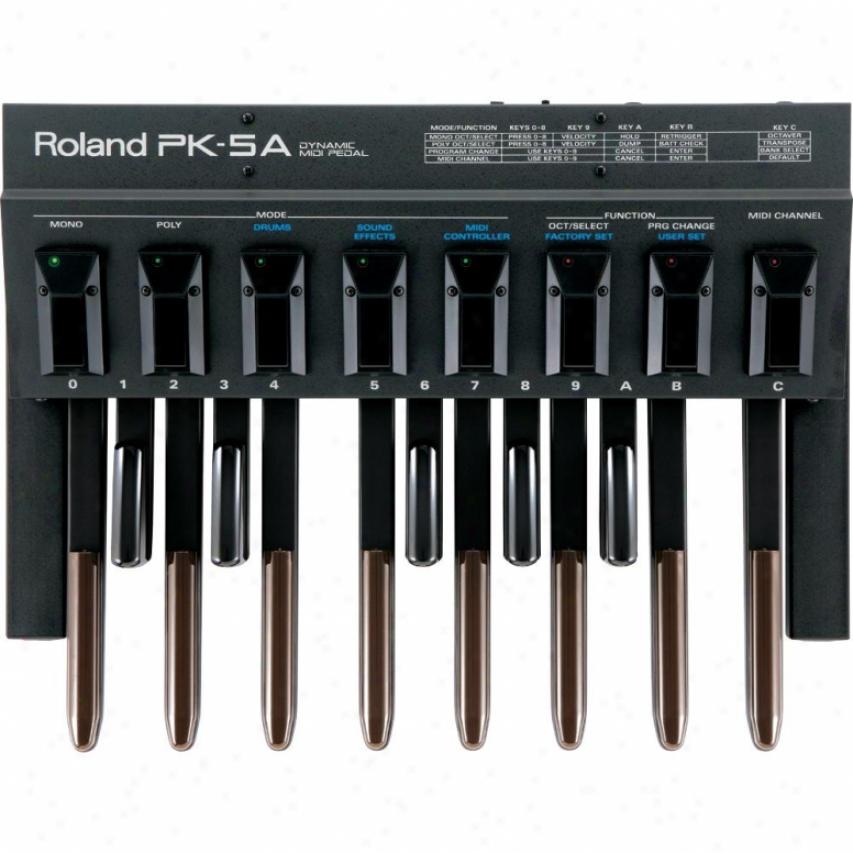 Roland Pk-5a Dyamic Midi Pedal