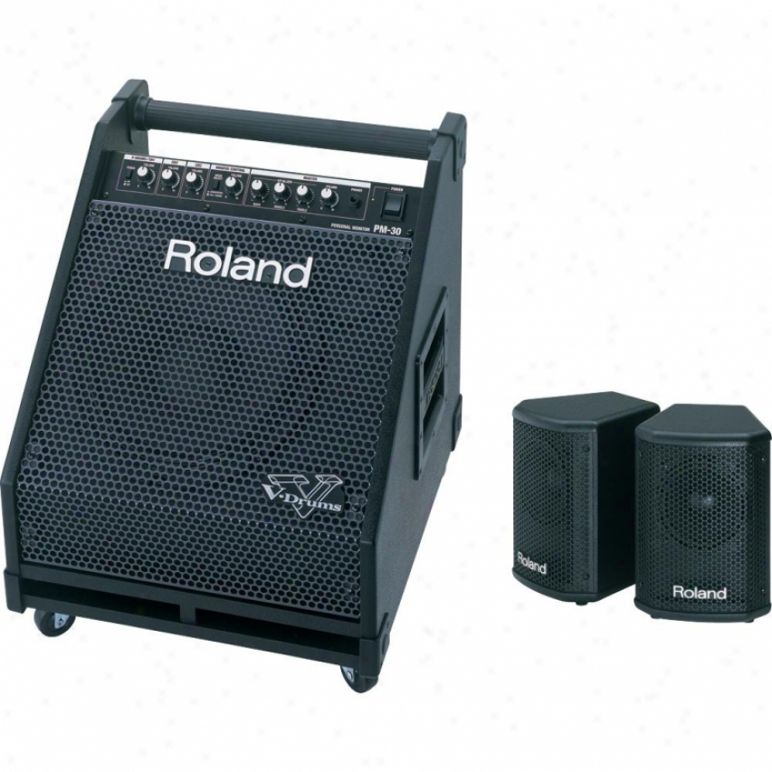 Roland Pm-30 Personal Monitor Amplifier