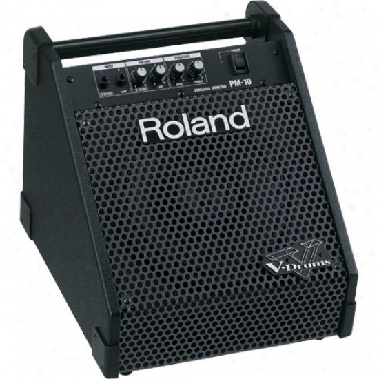 Roland Pm10 V-drum Speaker System