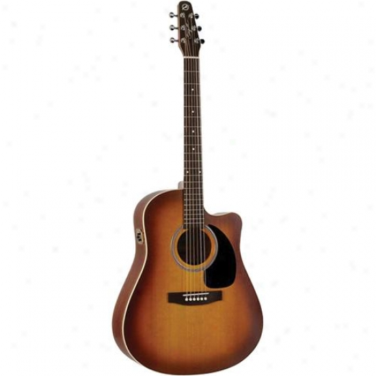 Seagull 003430 Entourage Rustic Cw Qi Acoustic Guitar