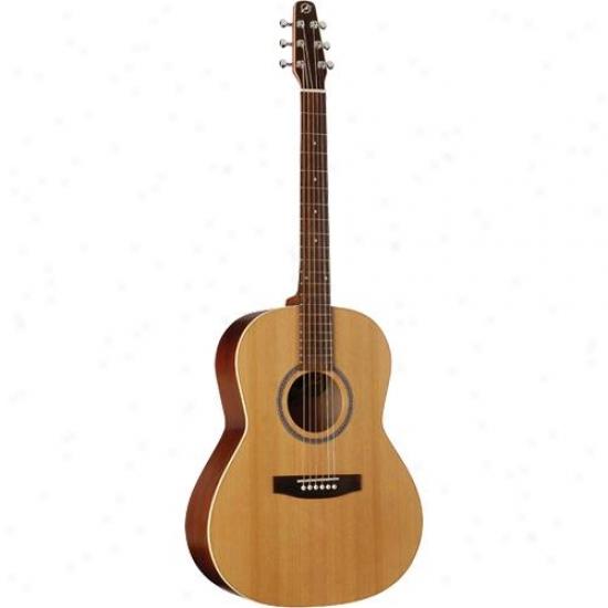 Seagul1 032549 Coastline Folk Cedar Acoustic Guitar - Semi-gloss Custom Finish