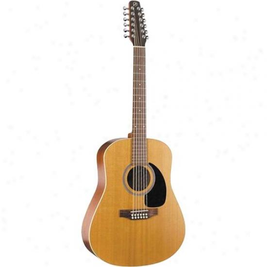 Seagull Coastline Cedar 1Z Set in a row Guitar