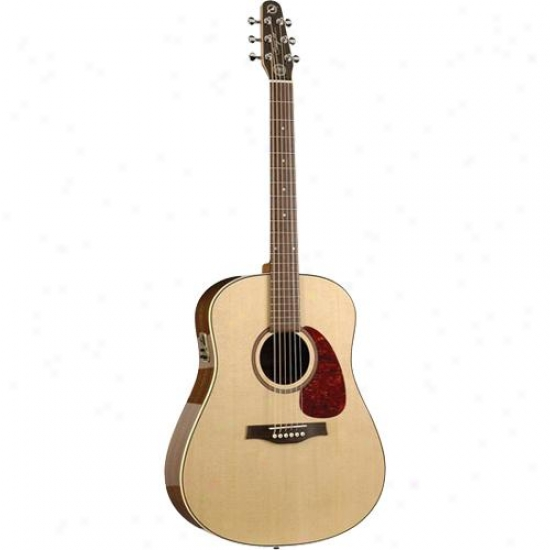 Seaguil MaritimeS ws Rosewood Sg Qi Acoustic-electric Guitar