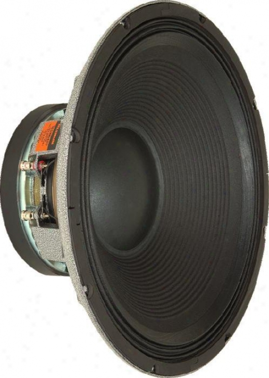 Selenium High Piwer 18 Professional Subwoofer, 1600 Watts Continuous