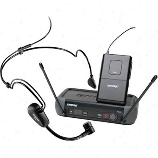 Shure Pgx14/pg30 Headworn Wireless System
